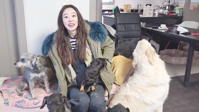 스타들의 못말리는 애완동물 사랑! 유기견에서 비어드 드래곤까지 인기 만점 스타★애완동물 심층 탐구! 썸네일 이미지
