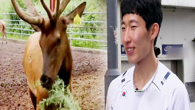 '녹용'요리로 마라톤 손명준 선수의 원기회복 완료!