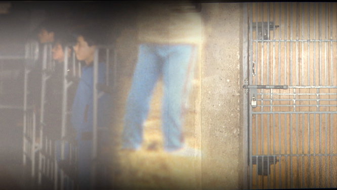 [139회] 형제복지원, 가려진 국가 폭력 30년 外 썸네일 이미지