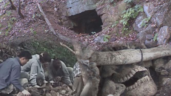 [1089회] 도둑골의 붉은 유령 - 여양리 뼈 무덤의 비밀