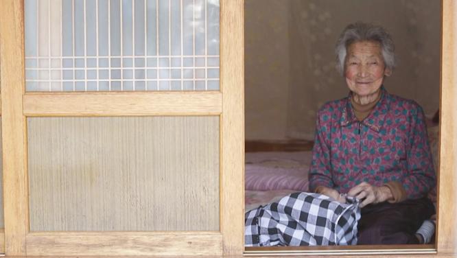 [491회] 도마일기2 - 꽃다운 날들 썸네일 이미지