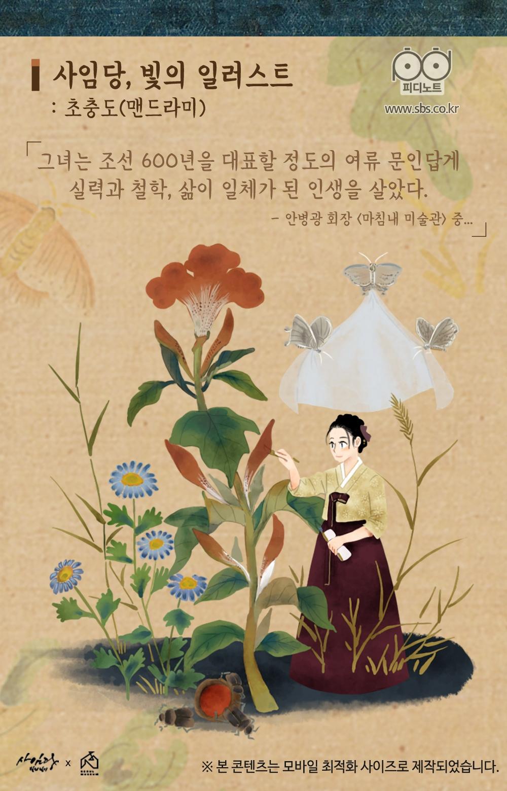 사임당, 빛의 일러스트, 초충도(맨드라미), 그녀는 조선 600년을 대표할 정도의 여류 문인답게 실력과 철학, 삶이 일체가 된 인생을 살았다.