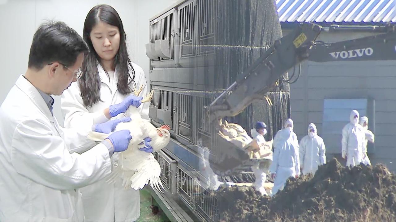 열린TV 시청자 세... 재난보도의 현주소, 조류독감... 931회 썸네일 이미지