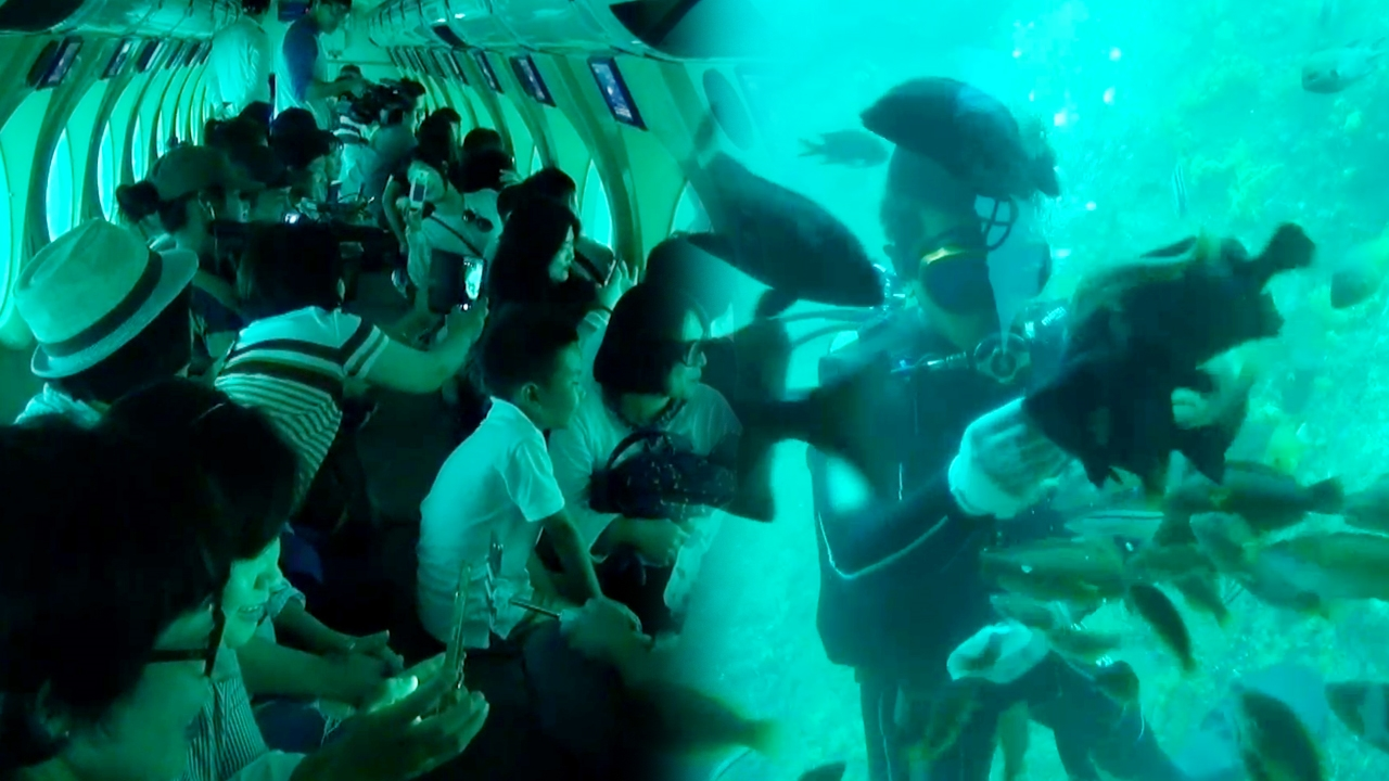 꾸러기 탐구생활 바다에서 만난 보물 724회 썸네일 이미지