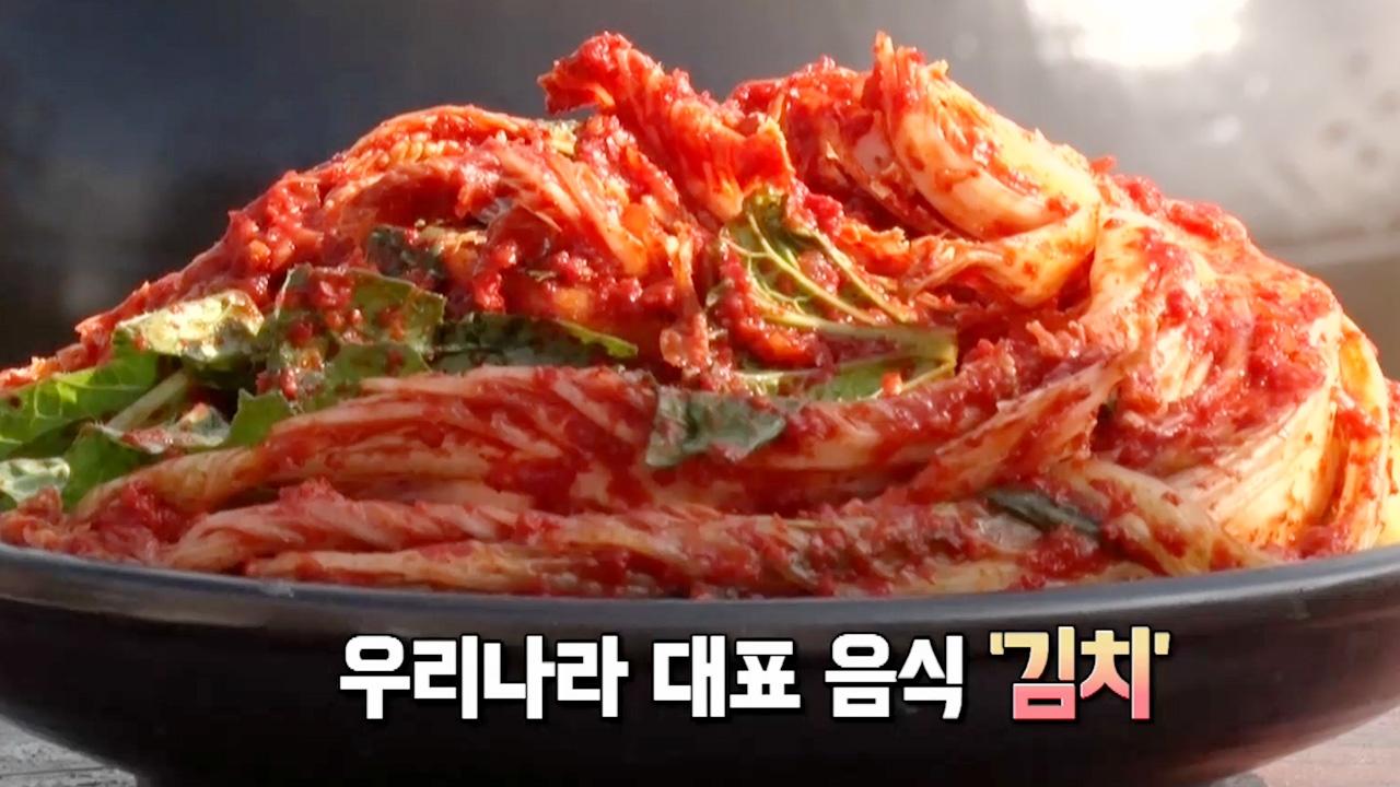 꾸러기 탐구생활 밭의 겨울맞이, 건강한 김치 730회 썸네일 이미지