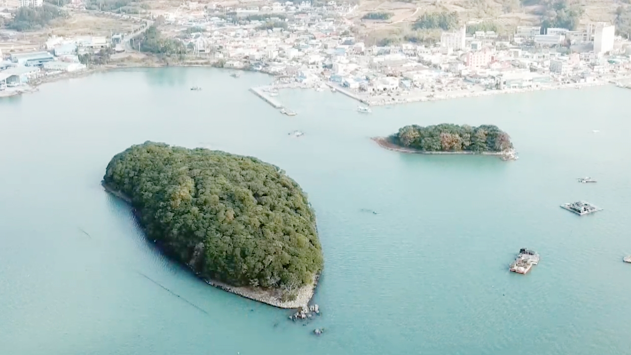 꾸러기 탐구생활 자연이 말하는 바다 이야기 734회 썸네일 이미지