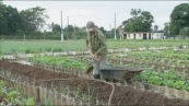 유기농 농산물 협동조합 (100세는 청년이다, 쿠바의 비밀)