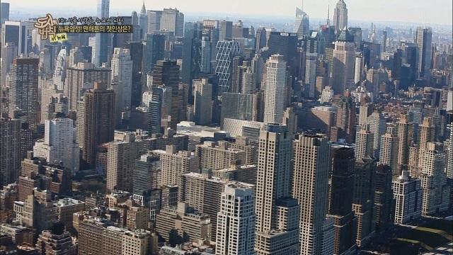 도시의 법칙 IN 뉴욕