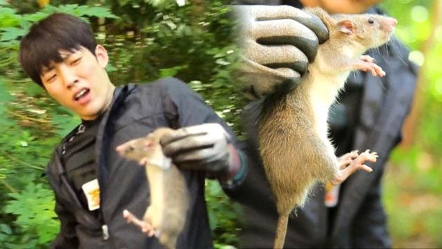 성열, 필사 추격전 끝 쥐 사냥 성공 '新에이스' 인증