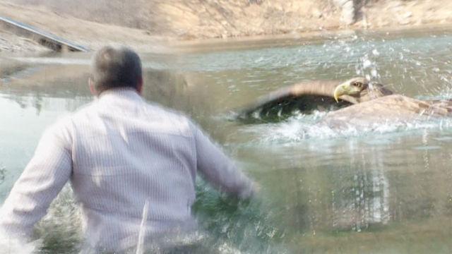 맹금 치료사 박상현, 위기상황에 '얼음 물 수영'