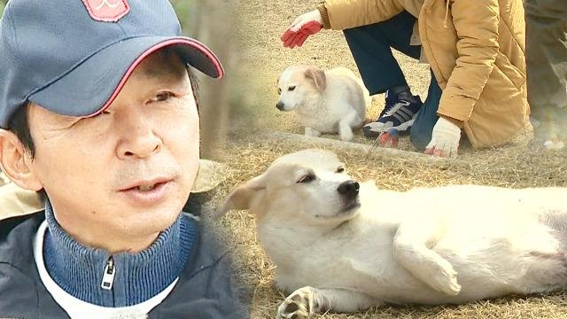 """김국진, 강아지 덕구와 귀여운 케미 """"옆으로 좀 가"""""""