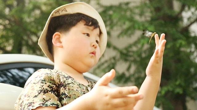 모르는 곤충이 없는 도시의 꼬마 파브르, 7살 진호