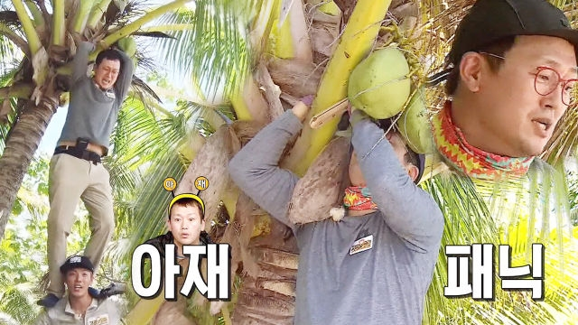 [단독] 김정태, 온몸으로 코코넛 따기 도전하는 아재의... 썸네일 이미지