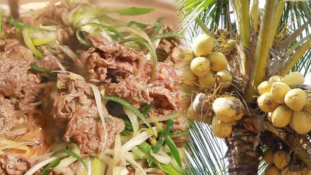 극강의 부드러움을 가진 불고기의 비밀 '코코넛오일' 썸네일 이미지