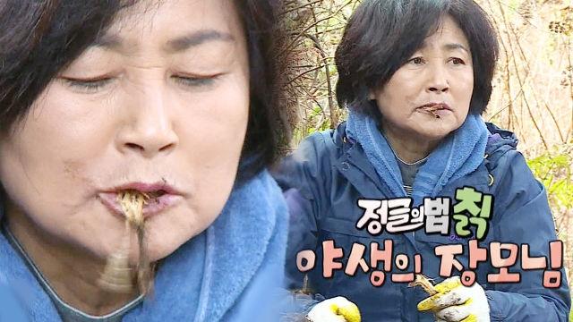 마라도 장모, 야성미 넘치는 칡 먹방 '정글의 법칡' 썸네일 이미지
