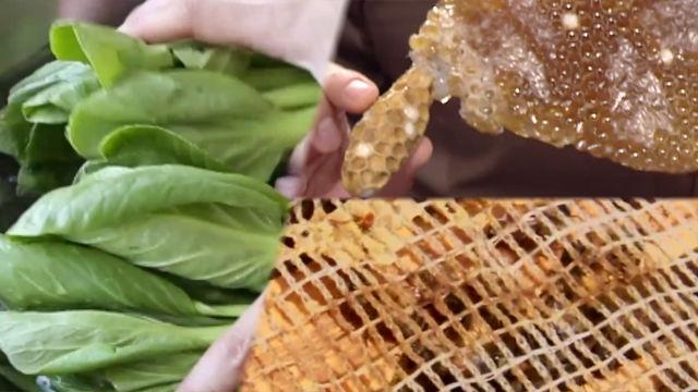 키도 쑥~ 면역력도 쑥~ 천연 식품 '청경채·로열젤리' (수요일N스타일)