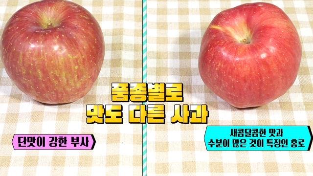 과일 소믈리에가 말한다! 신선한 과일 고르는 법 (황금 장바구니)