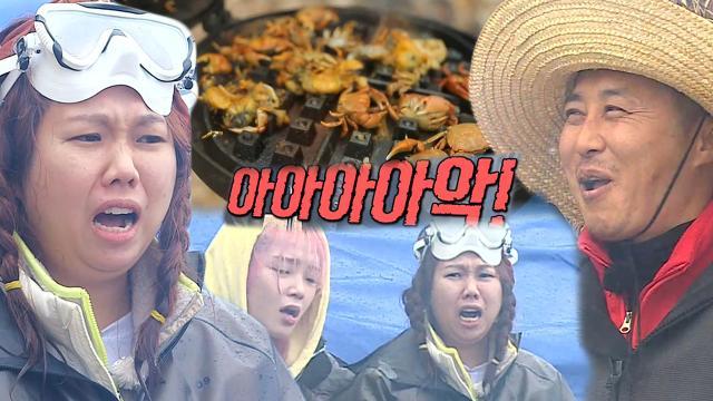 정법 멤버들, 와플 팬으로 구운 게 맛에 단체 환호성!
